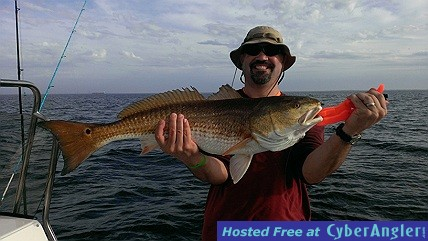November Redfish