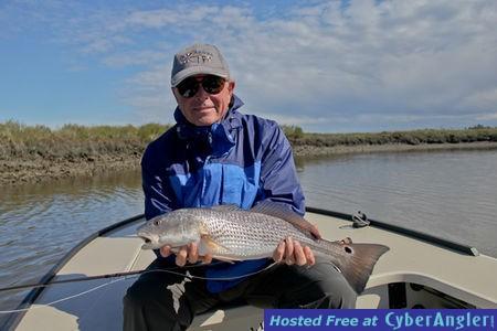 Anna maria island fly fishing tampa bay fly fishing for Tampa fly fishing
