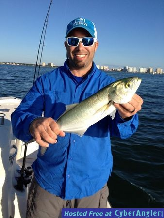 Sarasota fishing report capt jim klopfer 12 6 2014 for Sarasota bay fishing report