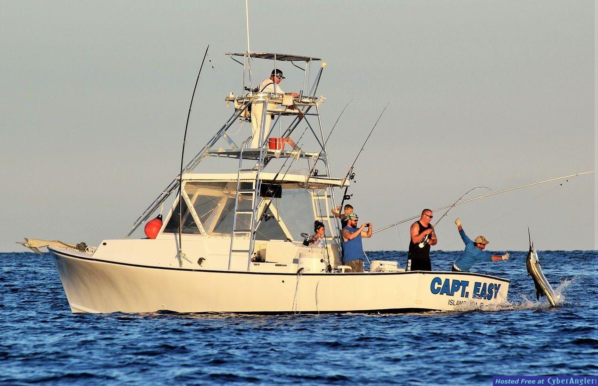Captain_Easy_Islamorada_sailfish_fishing