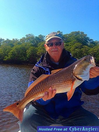 Estero bay big redfish sheepshead for Estero bay fishing report