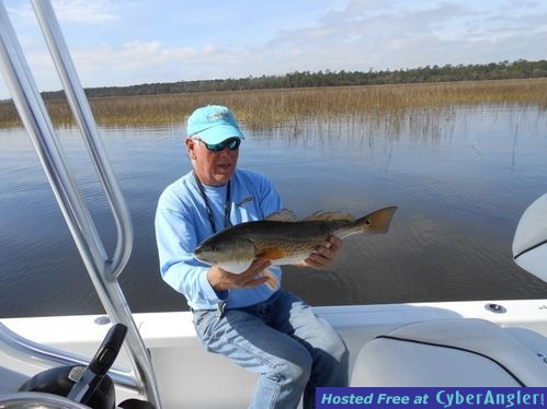 Great redfish bite in the lowcountry for Beaufort sc fishing charters