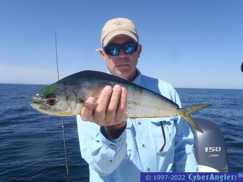 Light tackle offshore action in panama city florida for Pcb fishing report