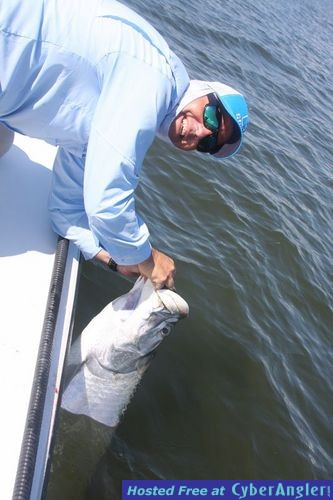 Tarpon fishing the everglades for How much is a saltwater fishing license in florida