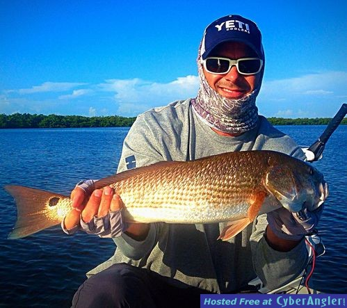 Estero bay redfish snook tarpon for Estero bay fishing report