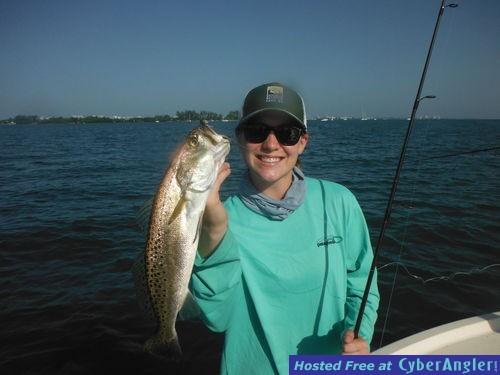 Sarasota fishing report capt jim klopfer 7 11 2015 for Sarasota fishing report