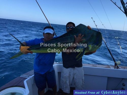 Pisces world record for Cabo san lucas fishing report