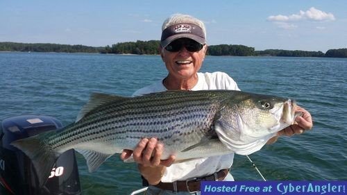 Striper and hybrid bite is on for Fishing lake hartwell