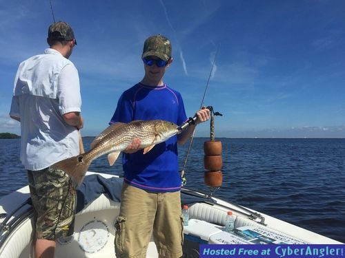 Tampa st pete and clearwater fishing charters for St pete fishing report
