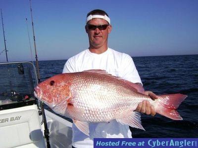 Destin to perdido key florida fishing reports by capt eddie for Destin fl fishing report