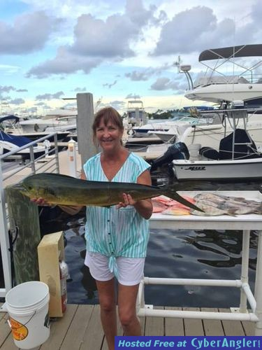 The bite out of jupiter is good for Jupiter florida fishing report