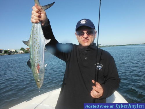 Sarasota fishing report capt jim klopfer 12 12 2015 for Sarasota fishing report