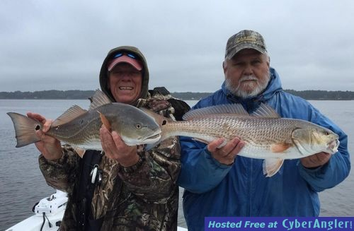 Winter redfish in the lowcountry for Beaufort sc fishing