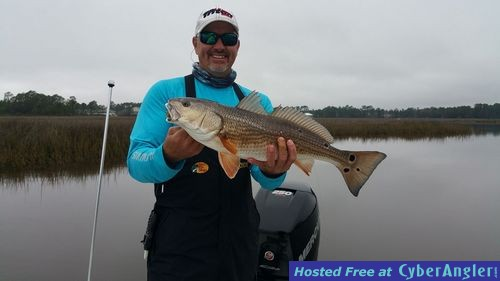 2016 pensacola fishing report forecast for Pensacola fishing forecast