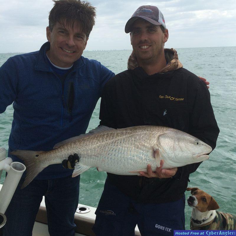 Gulf Redfish