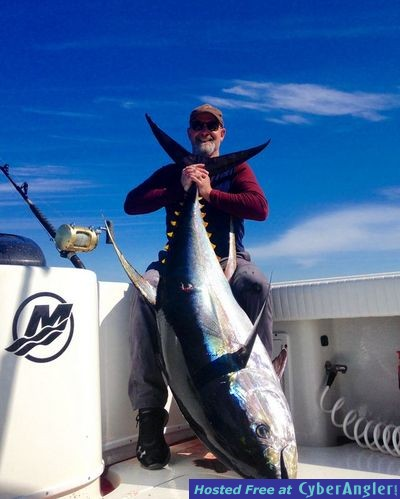 Crushing the big yellowfin tuna in venice la for Louisiana saltwater fishing license
