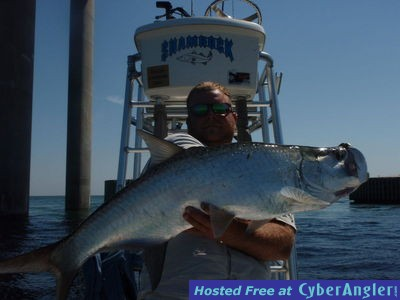 Tarpon at the sunshine skyway for Skyway fishing report
