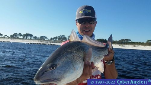 Great fishing in panama city beach fl for Panama city fl fishing report