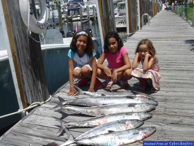 Dani's Kingfish