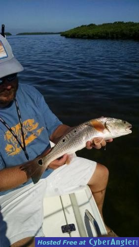 Redfish rule for Florida temporary fishing license