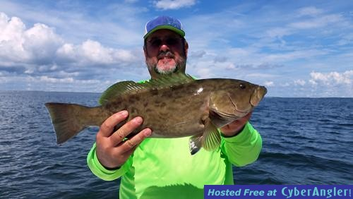 Tampa bay early fall fishing report for Skyway fishing report