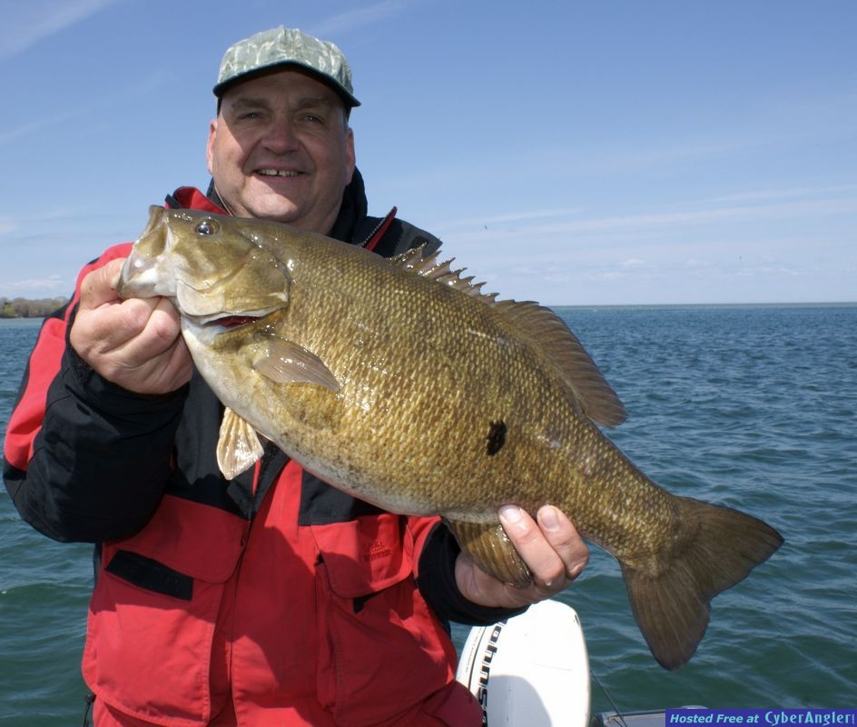 Beautiful Smallie!