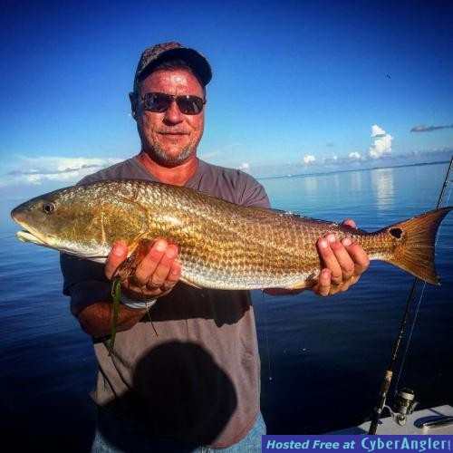 Between a rock and a hard place for Anna maria fishing report