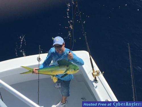 Action of miami florida continues to be good for Florida saltwater fishing report