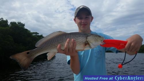 Tampa bay early winter report for Tampa bay fishing hot spots