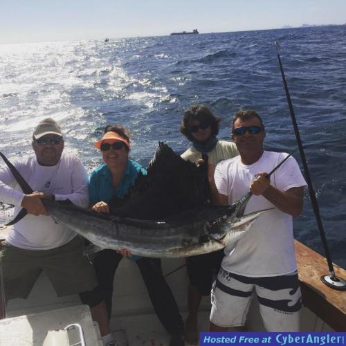 Sailfish sailfish sailfish for Ft lauderdale fishing report