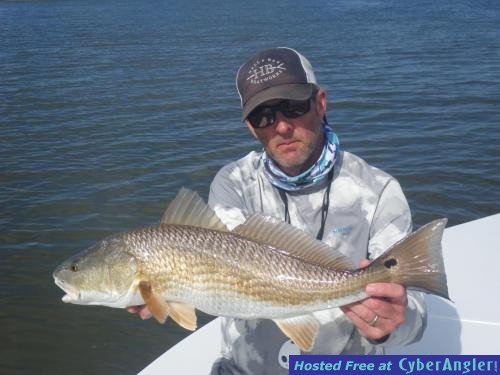Excellent redfish action in charleston south carolina for South carolina saltwater fishing regulations