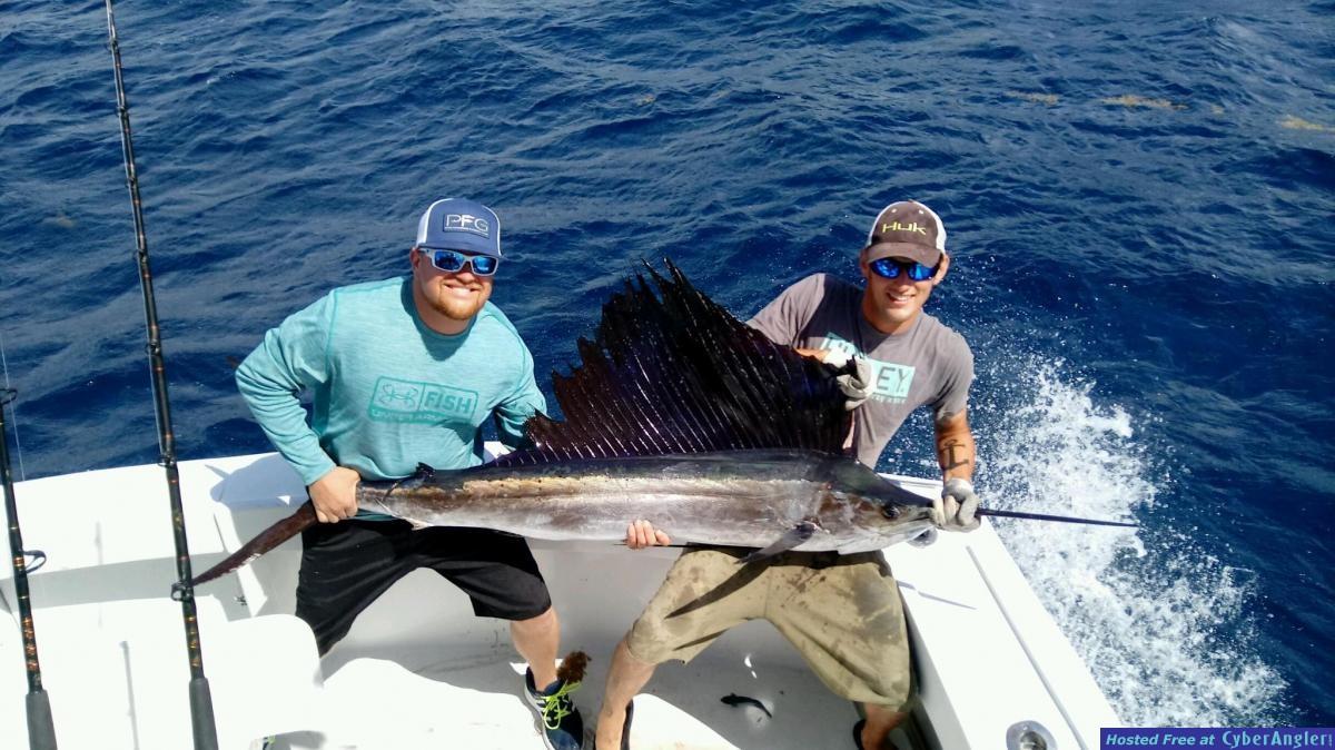 sail fish mike