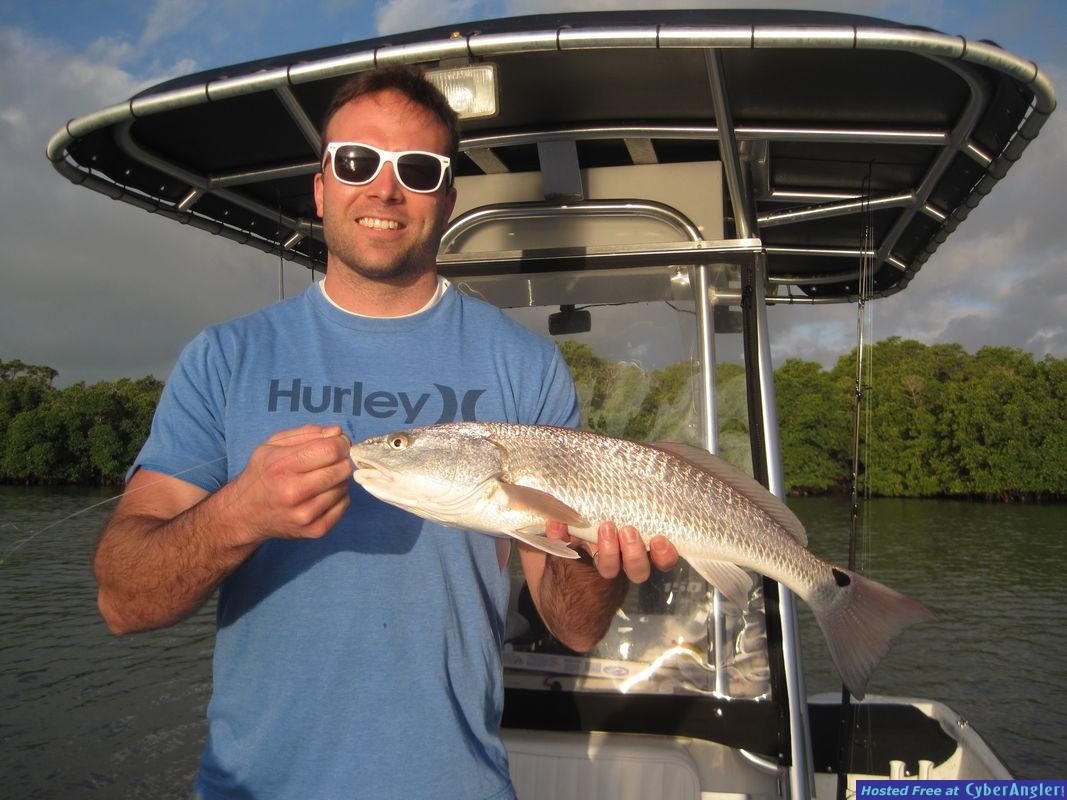 24-inch redfish