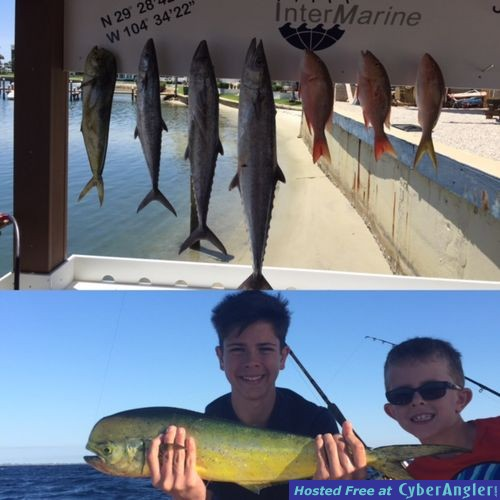 The action is good for Jupiter florida fishing report