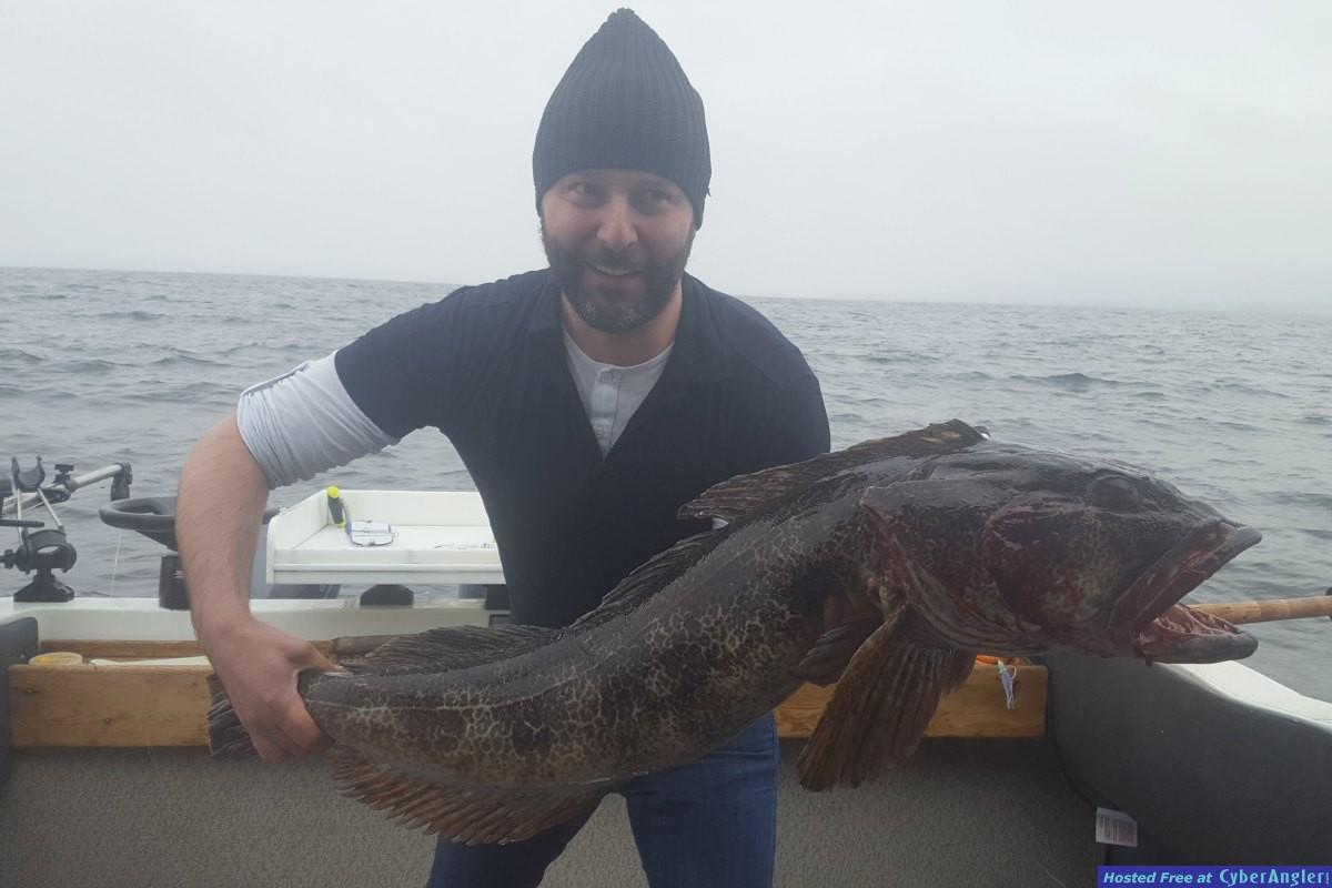 Big Ling Cod