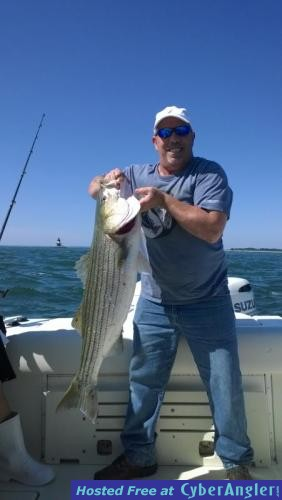 Hot striper fishing this week for Long island sound fishing report