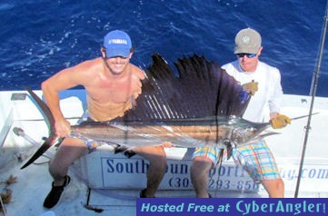14_Sailfish_2