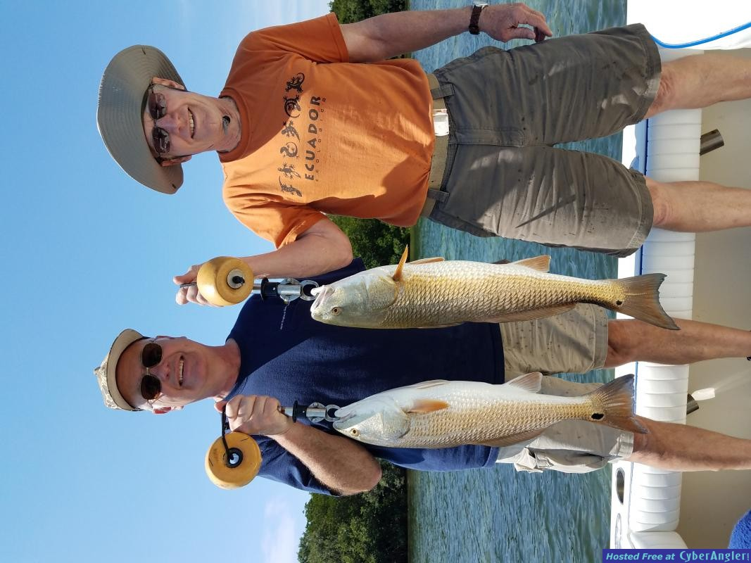 Redfish_trip_out_of_Safety_Harbor__Fl_fishing_guide_charter