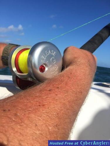 Offshore deep sea fishing report for Deep sea fishing new smyrna
