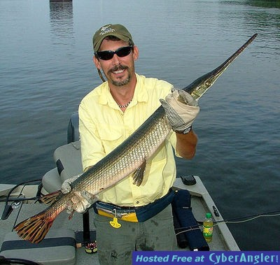 Gar on the fly and bonus big blue for Fly fishing chattanooga