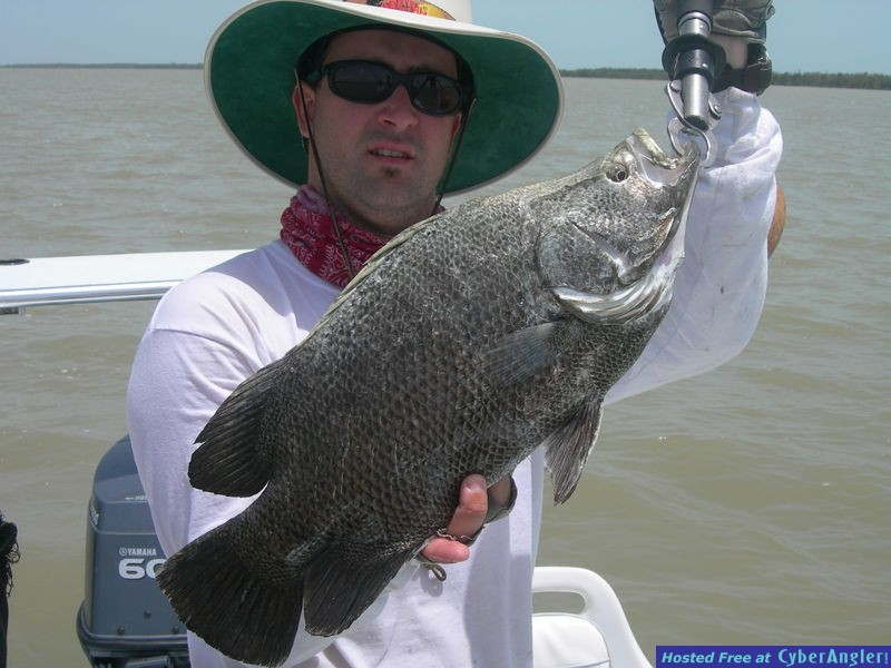 Tripletail and Capt. Ariel