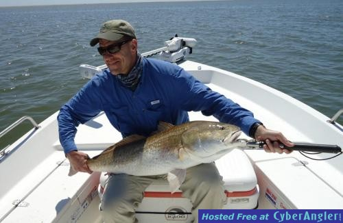venice louisiana fishing report