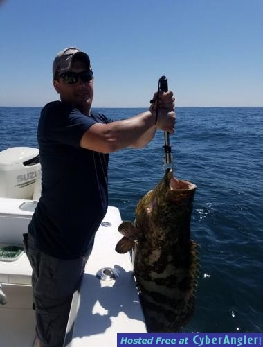 Ponce inlet fishing report march 8th 15th for Ponce inlet fishing