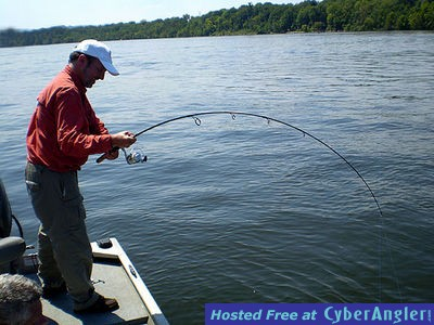 Scenic city fishing weekend of the blues for Fly fishing chattanooga