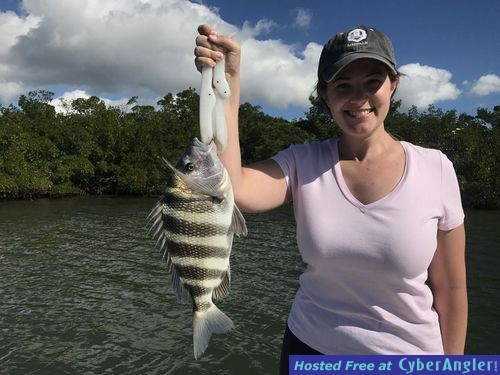 Estero Bay: Redfish and Sheepshead Are Saltwater Sheepshead Fish Good To Eat