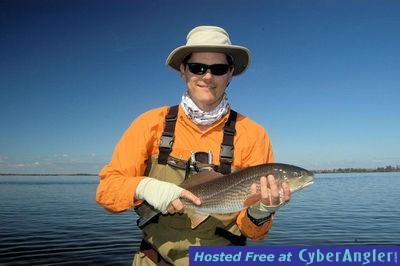 Sarasota fl shallow water fishing gets hot for Tides for fishing sarasota