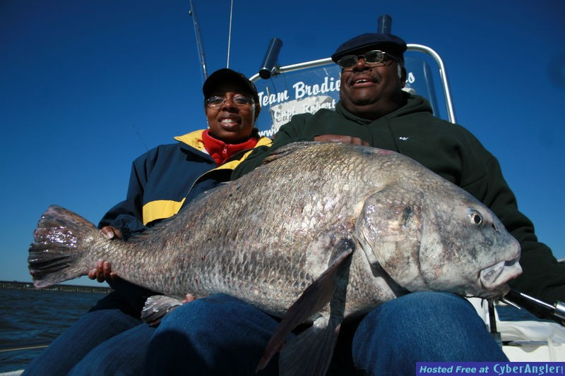 Fishing Biloxi Ms Giant Black Drum Made The Day