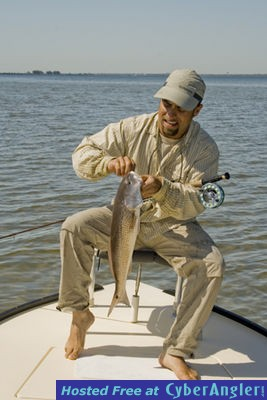 Make the wind stop for Tampa bay fishing reports