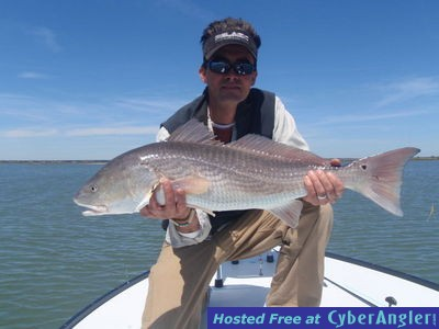 Finaddict charters fly spin charleston sc for Fly fishing charleston sc