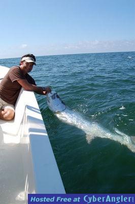 Panama city beach tarpon for Pcb fishing report